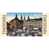 Timisoara in the twentieth century postcards